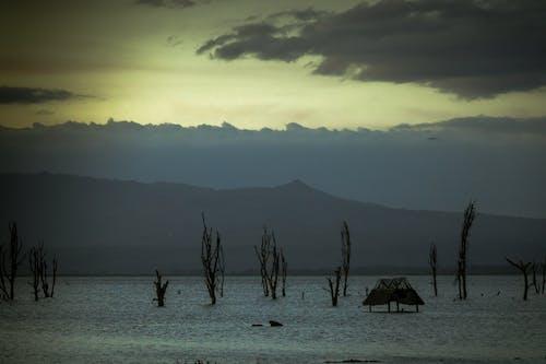 湖小屋 的 免费素材照片