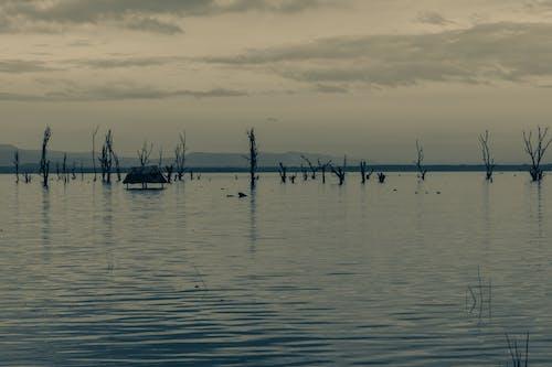 Gratis arkivbilde med hytte innsjø