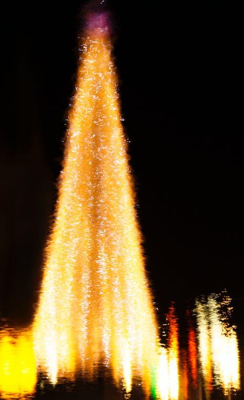Free stock photo of christmas tree, reflection