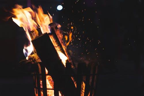 Imagine de stoc gratuită din atrăgător, căldură, flacără, foc
