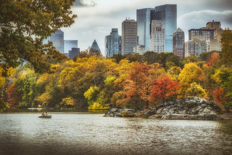 ニューヨーク市, ニューヨーク市の壁紙, 中央公園, 手漕ぎボートの無料の写真素材