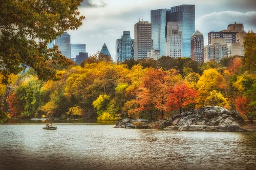 Free stock photo of central park, colors of autumn, new york city, new york city wallpaper