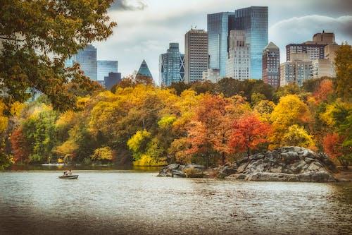 คลังภาพถ่ายฟรี ของ นิวยอร์กซิตี้, วอลล์เปเปอร์เมืองนิวยอร์ก, สีของฤดูใบไม้ร่วง, เซ็นทรัลปาร์ค