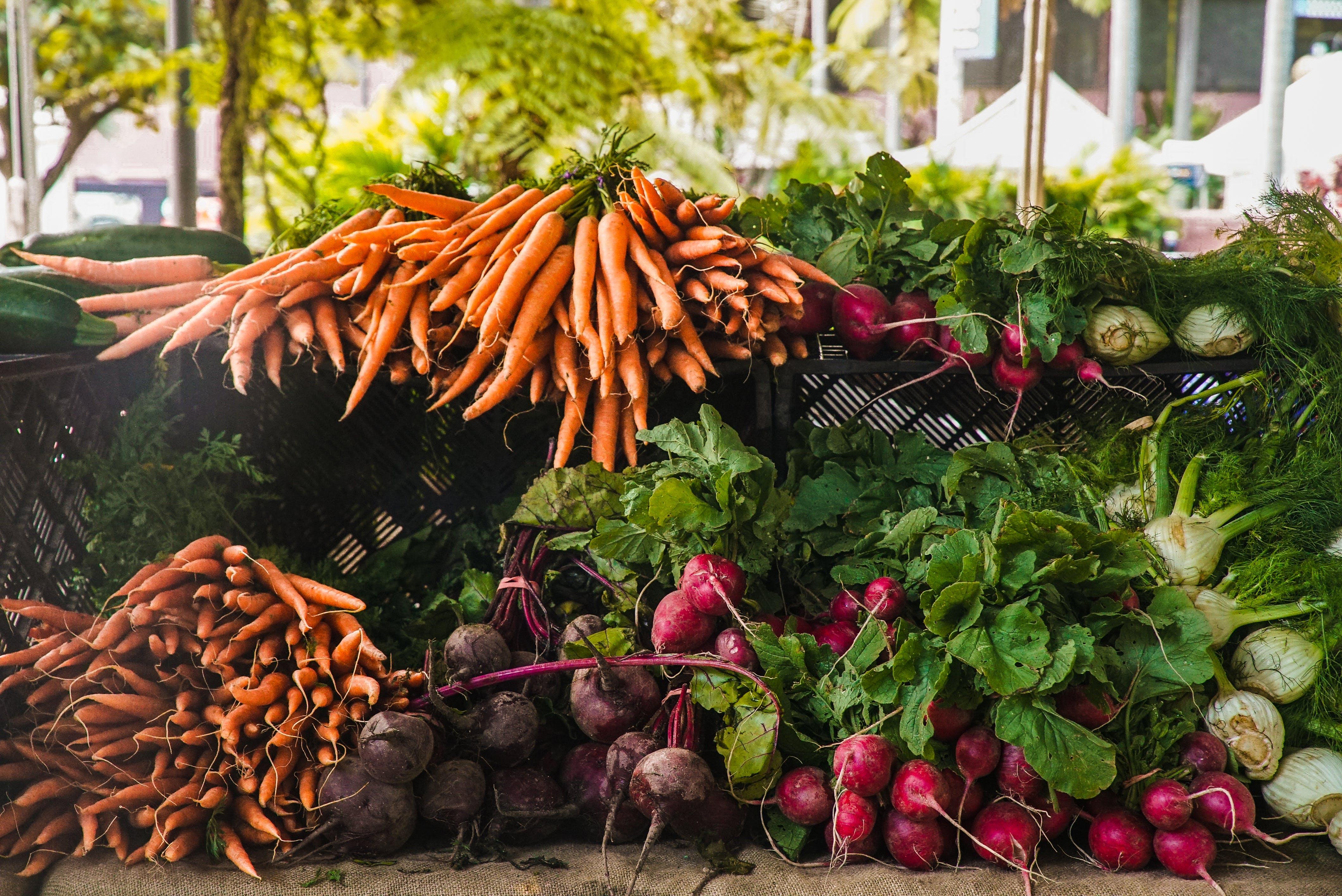 Fotos de stock gratuitas de comida, Fresco, mercado, rábano