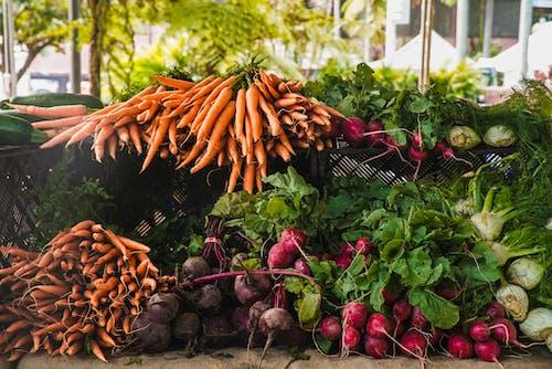 Δωρεάν στοκ φωτογραφιών με αγορά, καρότα, λαχανικά, ραπανάκι