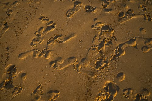Foto Di Impronte Sulla Sabbia