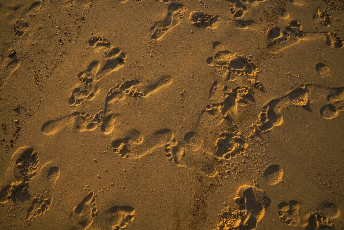 piasek, plaża, ślady