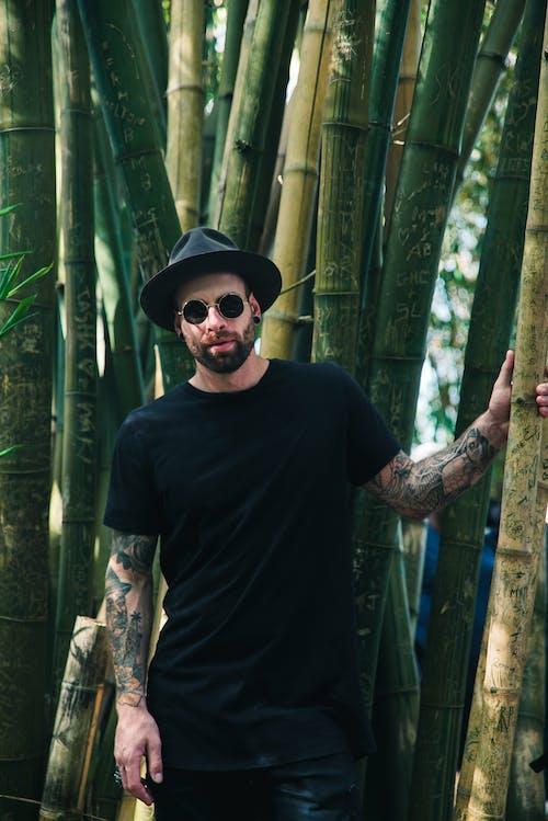 Základová fotografie zdarma na téma bambus, bambusy, černá košile, cestování