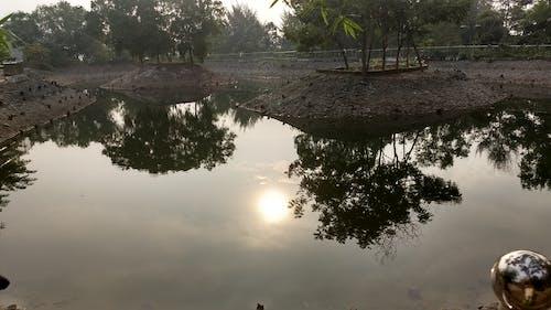 Fotos de stock gratuitas de agua Azul, agua clara, agua dulce