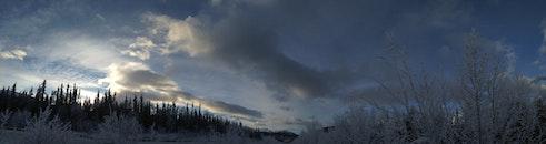 cold, snow, wood