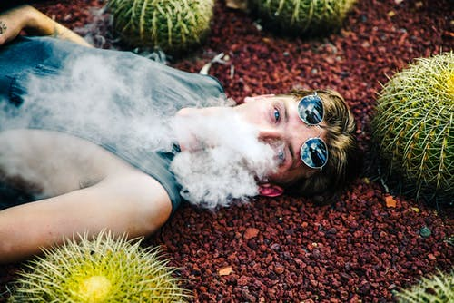 Person Smoking While Lying on Gravel With Cactus