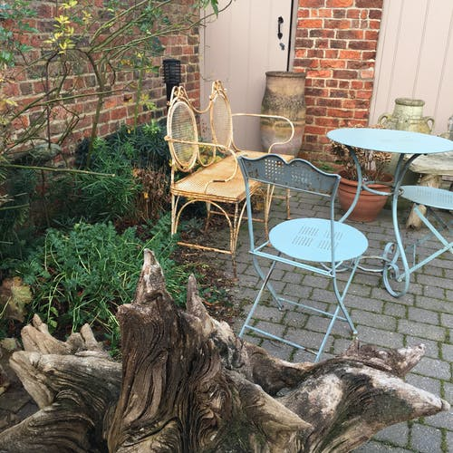 Free stock photo of beer garden, blue chair, bush, chairs