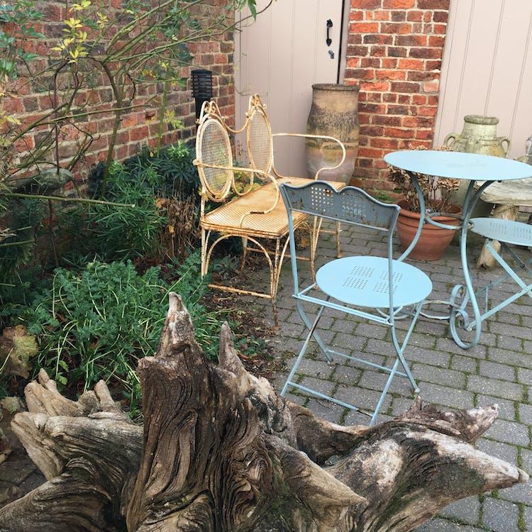 beer garden, blue chair, bush