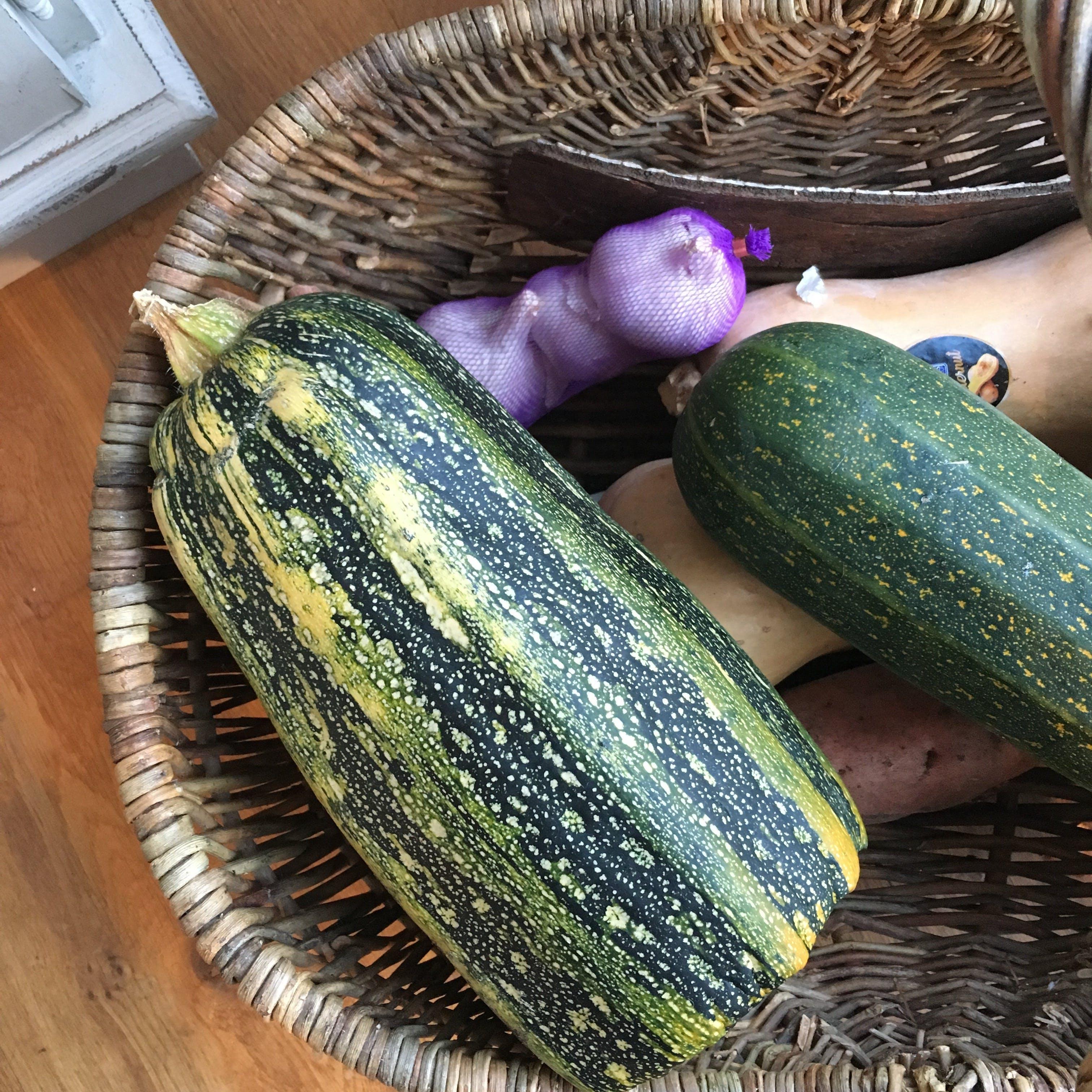 Free stock photo of christmas, cucumber, garlic, marrow