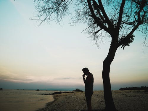 Gratis stockfoto met Bali, boom, staand, strand