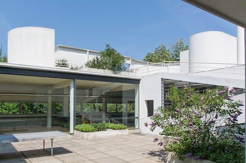 Foto stok gratis Arsitektur modern, halaman, lecorbusier, modernisme