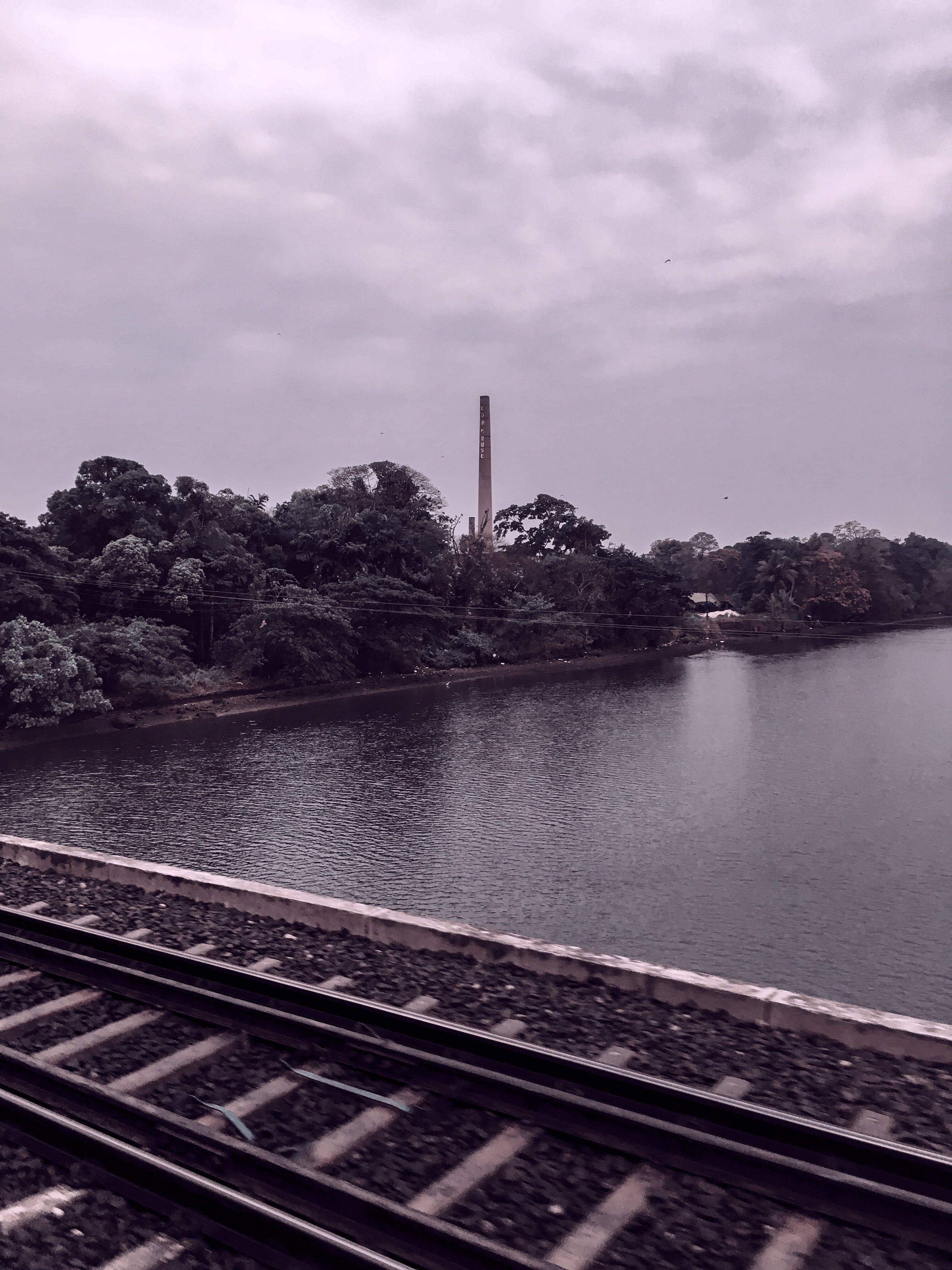 Grey Metal Train Railings Bear Body of Water