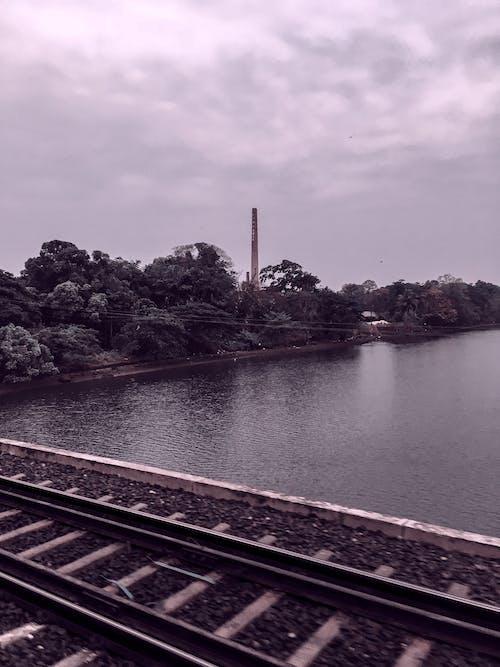 Gratis stockfoto met bomen, brug, daglicht, h2o