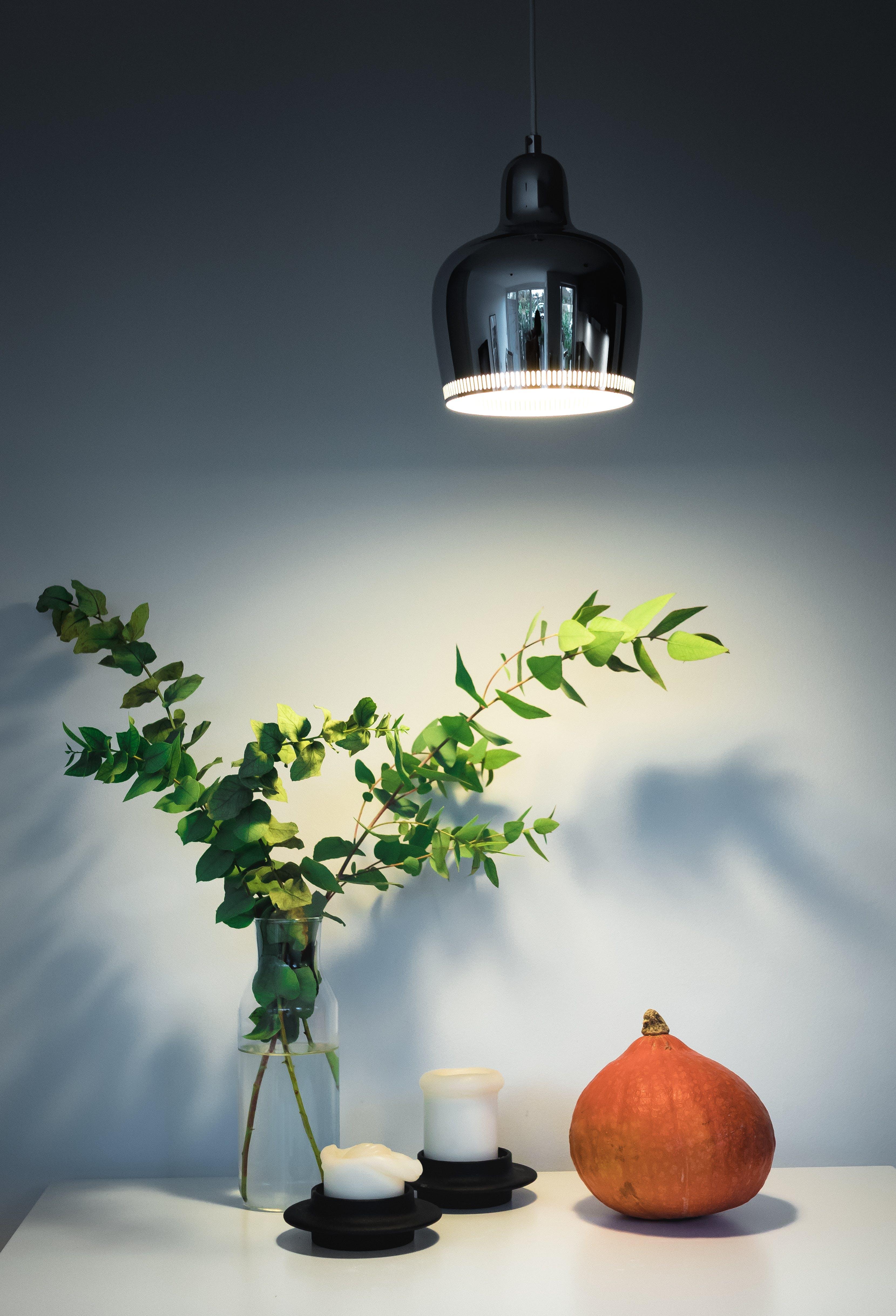 Kostenloses Stock Foto zu bunt, frisch, grün, hängen
