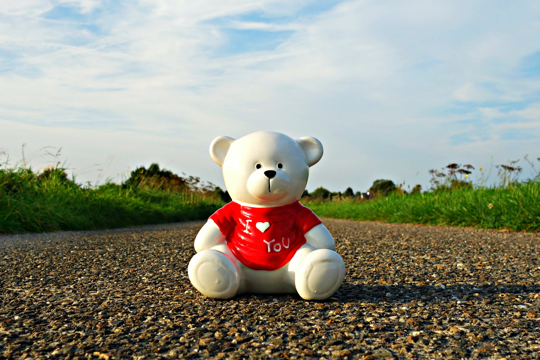 White Bear on Brown Pavement