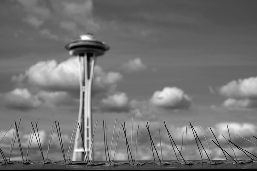 Free stock photo of sky, clouds, space needle, seattle