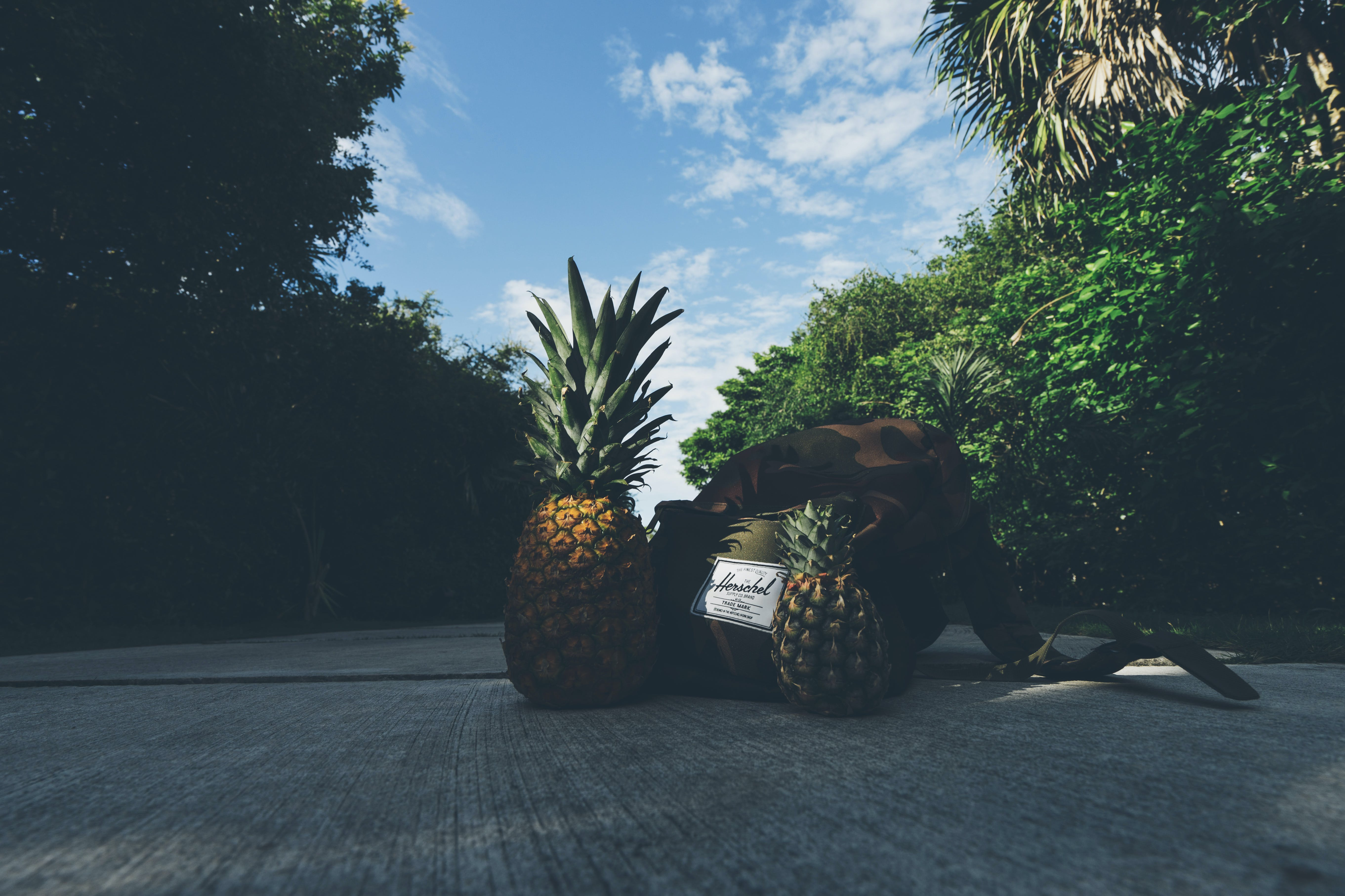 Pineapples Beside Backpack