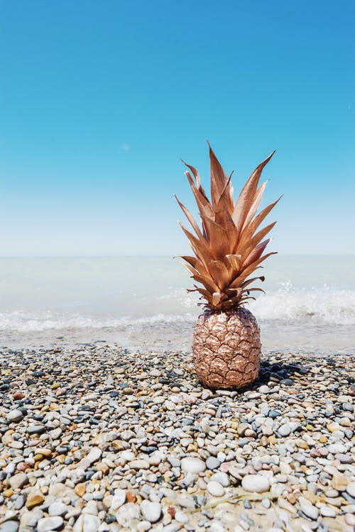 Photo of Painted Pineapple Fruit on Pebble Beach