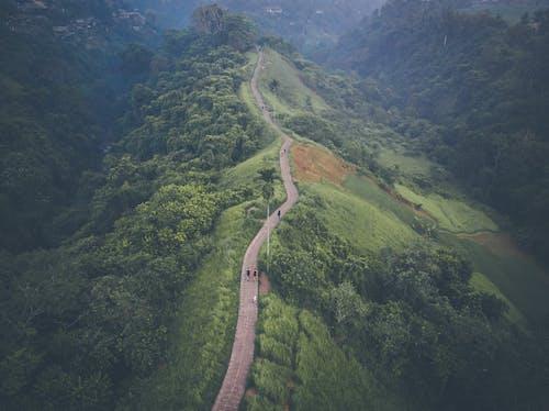 Gratis lagerfoto af Asien, Bali, bali indonesien, bjerg