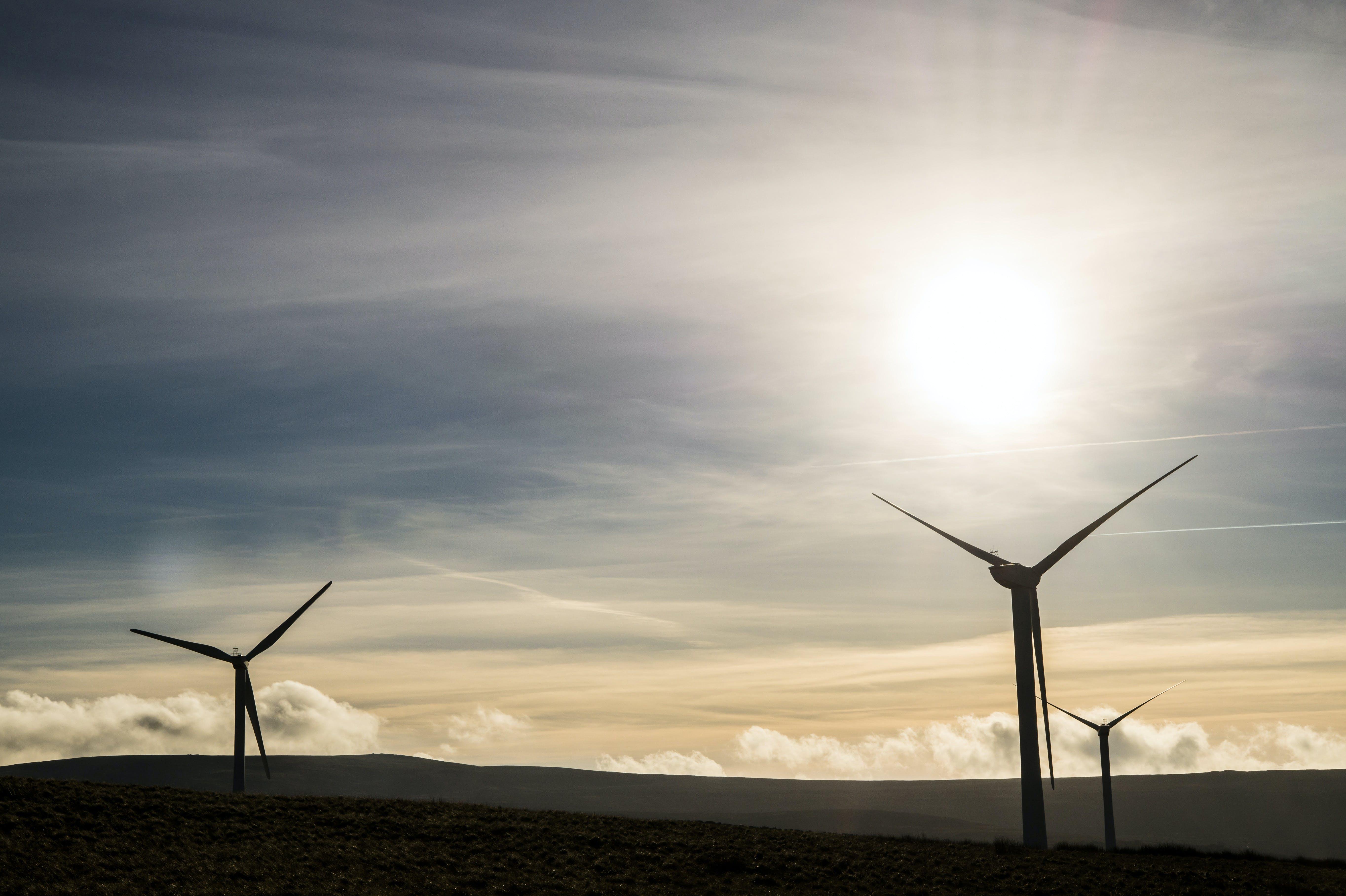 alternativ, bæredygtighed, effektivitet