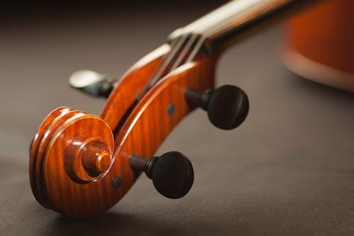 Fotobanka sbezplatnými fotkami na tému detailný záber, hudba, hudobný nástroj, husle