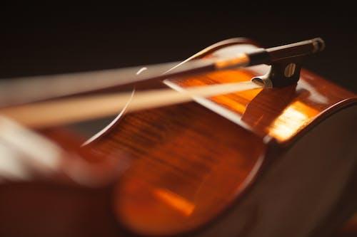 Foto profissional grátis de clássico, curva, instrumento, instrumento de cordas