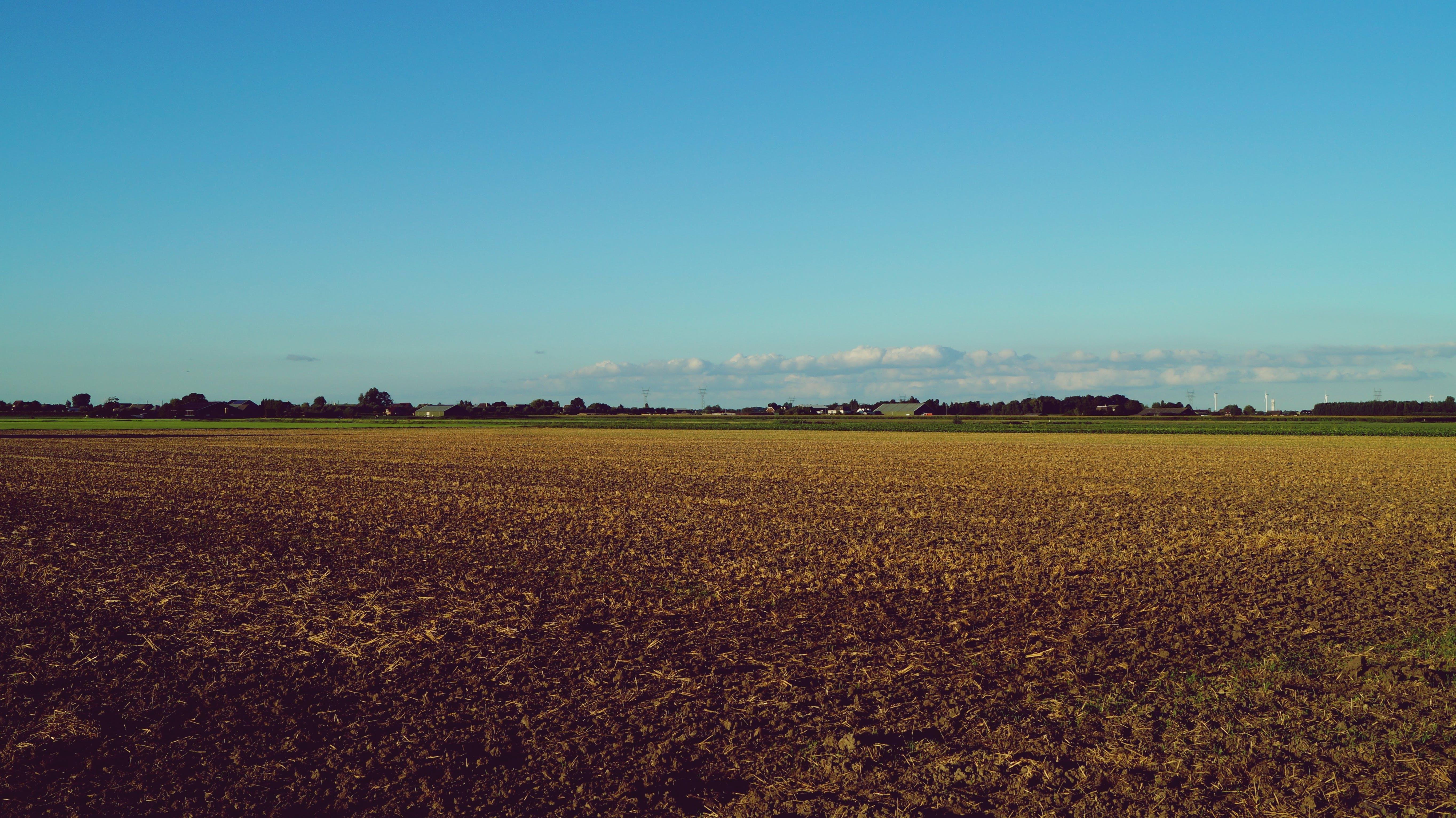 farma, hřiště, krajina