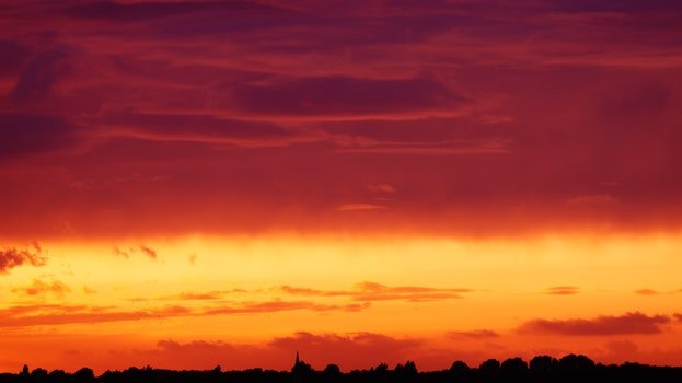 Silhouette of Trees Under Orange and Red Sky