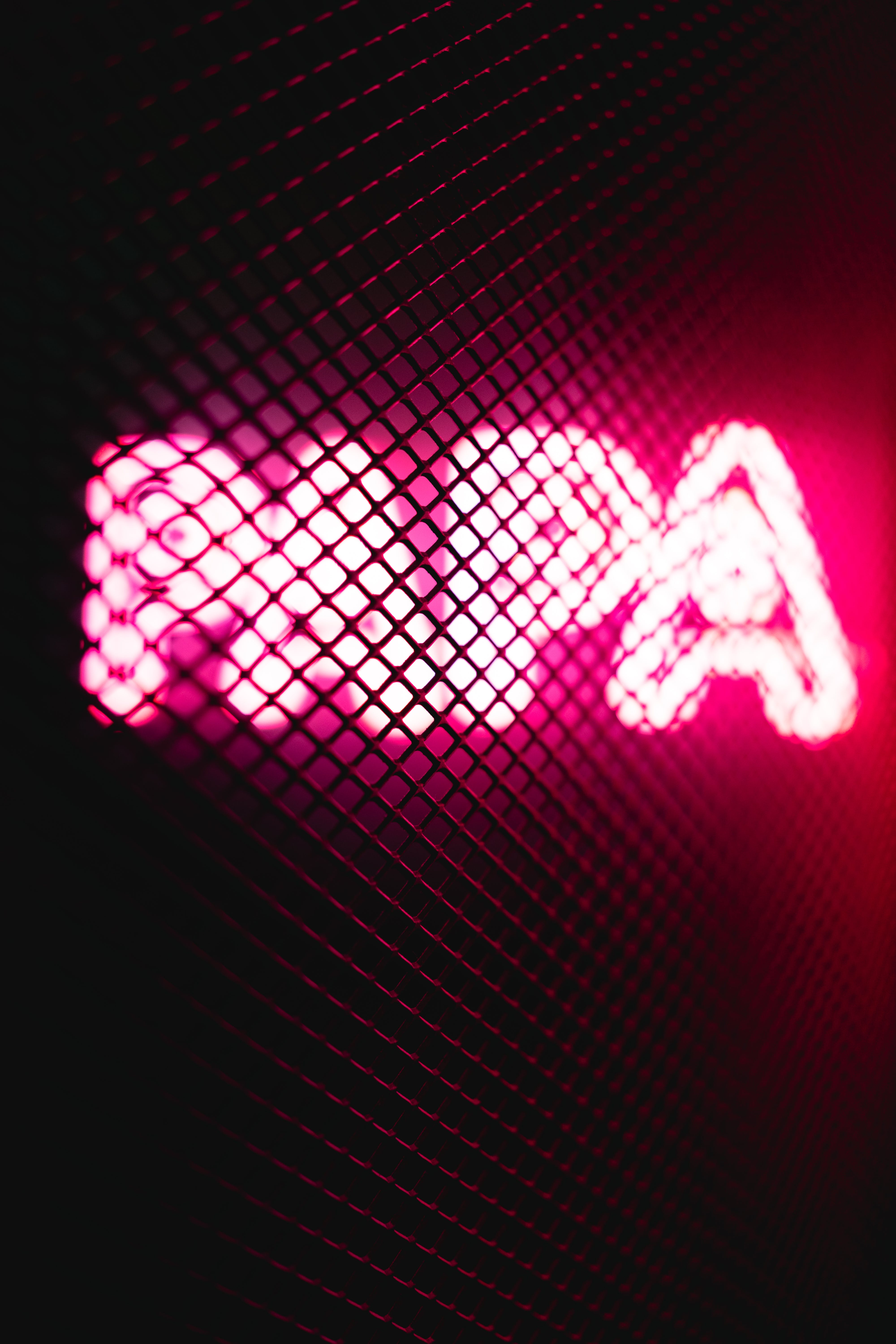 Turned-on Pink Papa Neon Signage