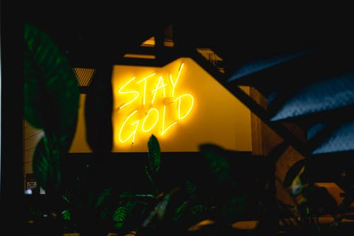Stay Gold Neon Signage
