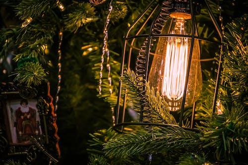 Бесплатное стоковое фото с лампа, легкий, освещенный, снимок крупным планом