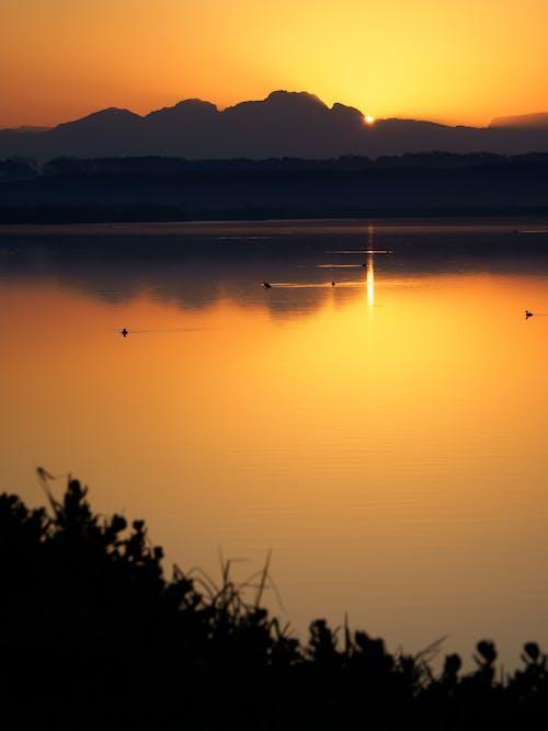 Lake During Golden Sunset