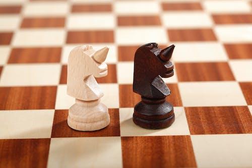 Δωρεάν στοκ φωτογραφιών με επιτραπέζιο παιχνίδι, μονόκερος, πιόνια σκακιού