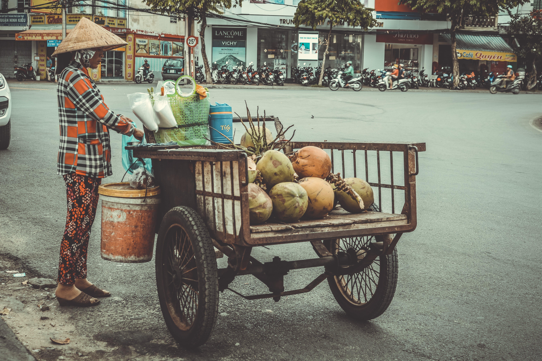 Foto d'estoc gratuïta de # tiếng việt, #tracynguyenphotoraphy