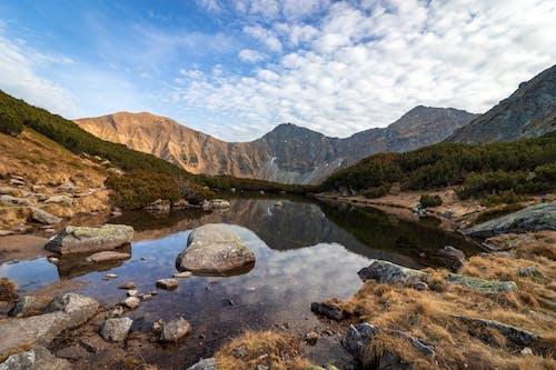 Gratis stockfoto met berg, bergmeertje, bomen, daglicht