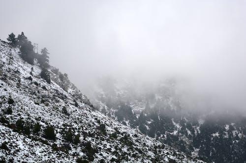 Бесплатное стоковое фото с белоснежный, гора, зима, коса