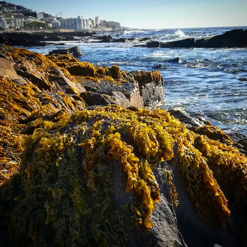 Fotos de stock gratuitas de mar