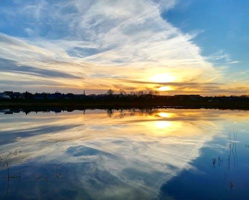 Fotos de stock gratuitas de arboles, cielo, nubes, puesta de sol