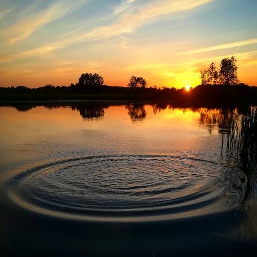 Fotos de stock gratuitas de agua, cielo, ondas, puesta de sol
