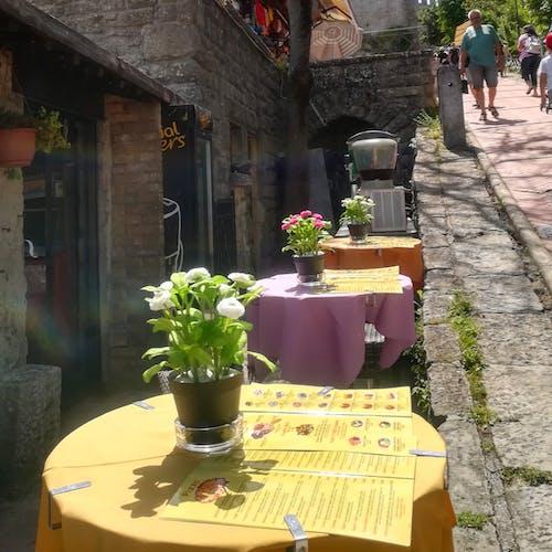 Fotos de stock gratuitas de bar cafetería, cafetería, calle, flores