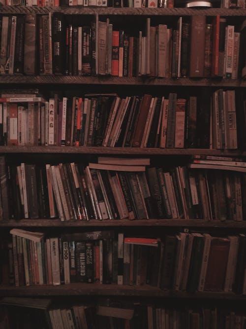 Ilmainen kuvapankkikuva tunnisteilla hyllyt, kirjahylly, kirjahyllyt, Kirjasto