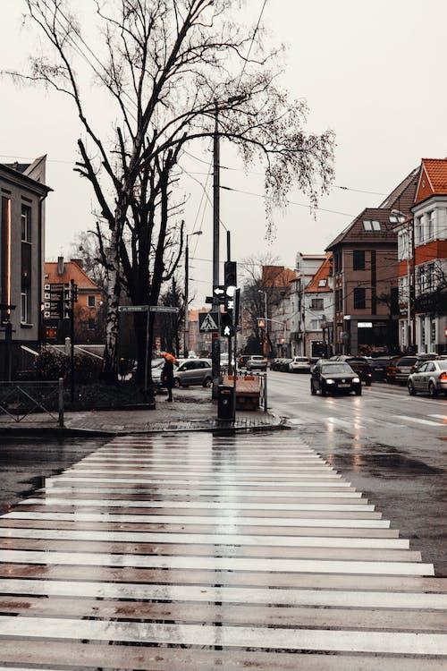 乾枯, 交通系統, 人行道, 城鎮 的 免費圖庫相片
