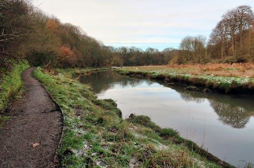 Free stock photo of northumberland, river bank, Seaton Sluice, UK