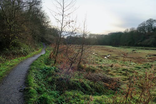 Free stock photo of mash, northumberland, Seaton Sluice, UK