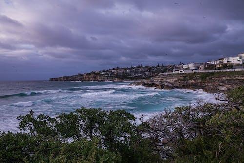 Безкоштовне стокове фото на тему «берег моря, Будинки, вода, Денне світло»